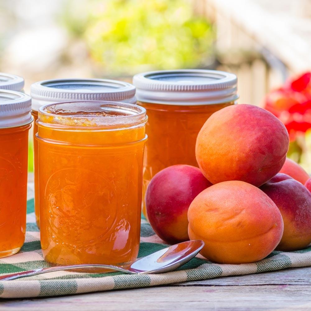 Conserves d'abricot gingembre