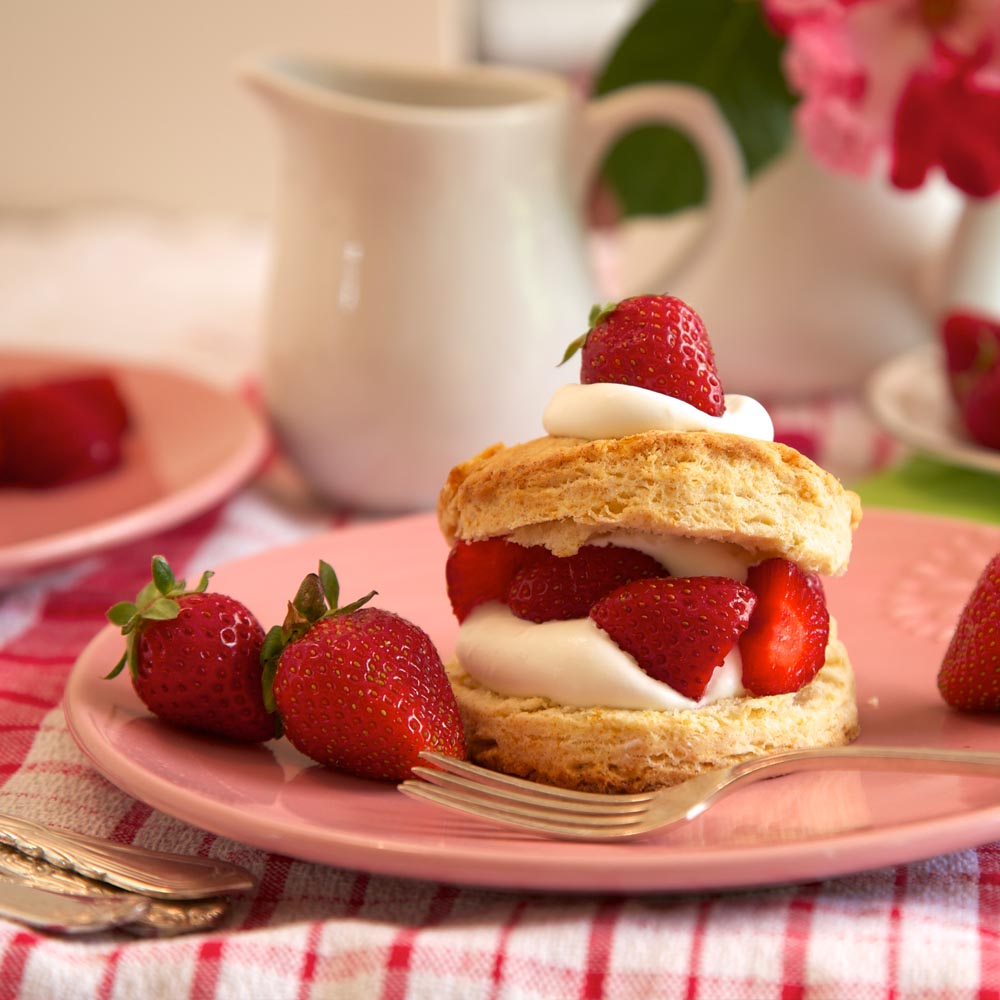Shortcake aux fraises sucrées et acidulées